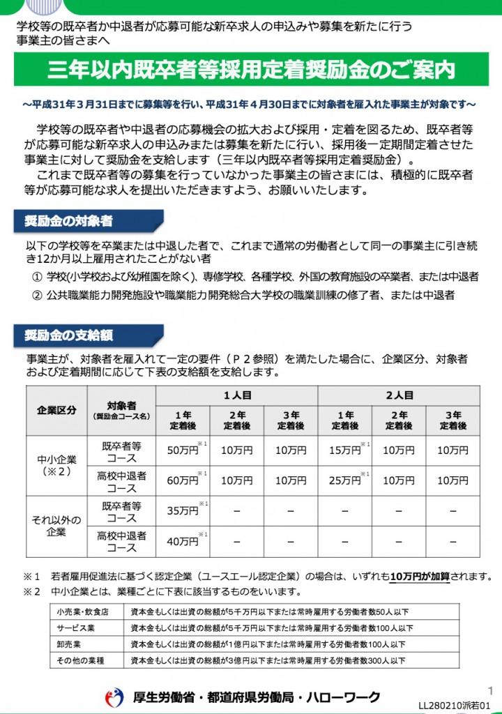 3年以内既卒者等採用定着奨励金の厚労省パンフ